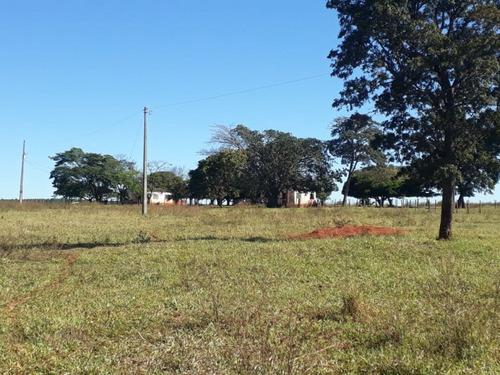 fazenda a venda em ribas do rio pardo - ms (pecuária) - 711