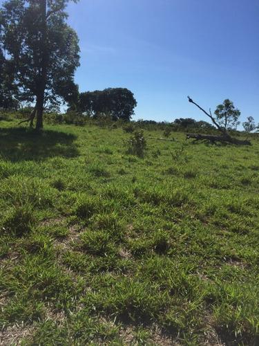 fazenda a venda em ribas do rio pardo -ms (pecuária) - 790