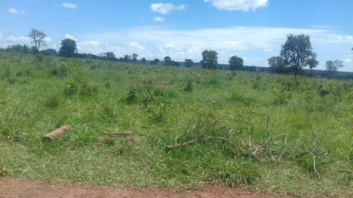 fazenda a venda em ribas do rio pardo -ms (pecuária) - 810