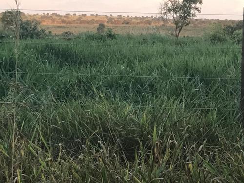 fazenda a venda em ribas do rio pardo - ms (pecuária) - 969