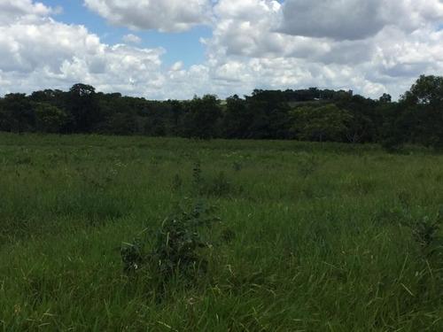 fazenda a venda em ribas do rio  pardo - (pecuária) - 1131