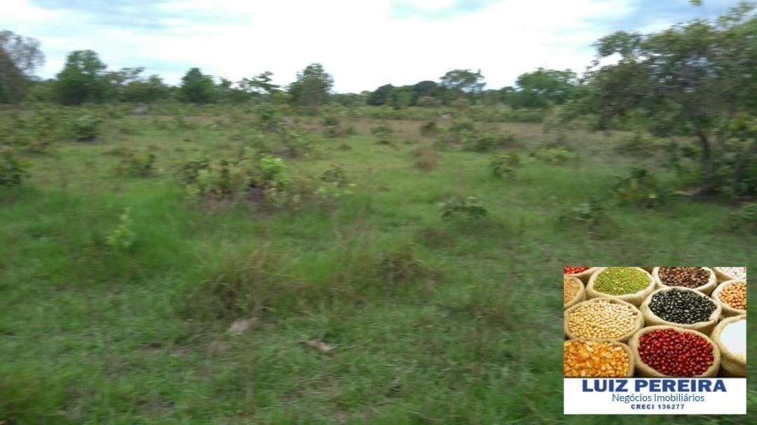 fazenda a venda em rio sono -to (agricultura e pecuária) - 807