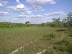 fazenda a venda em rio sono - to,  ( pecuária ) - 175