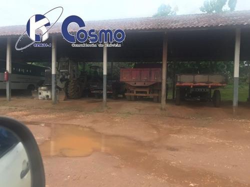 fazenda, a venda, em rondolândia - mt - fa00049 - 33324503