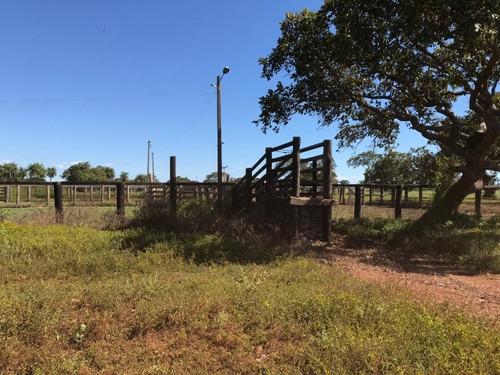 fazenda a venda em santa rita do tocantins - to(agricultura) - 714