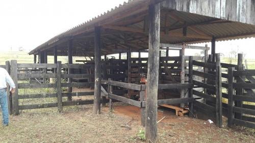 fazenda a venda em sta. rita do pardo - ms ( dupla aptidão) - 895