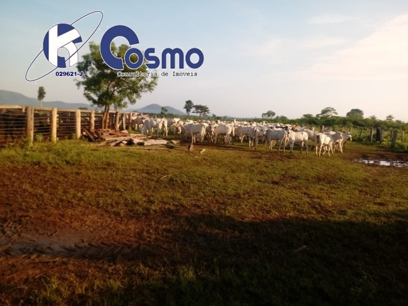 fazenda , a venda, em vila rica - mt - fa00083 - 33612893