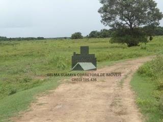 fazenda a venda no bairro zona rural em poconé - mt.  - 2019422-1