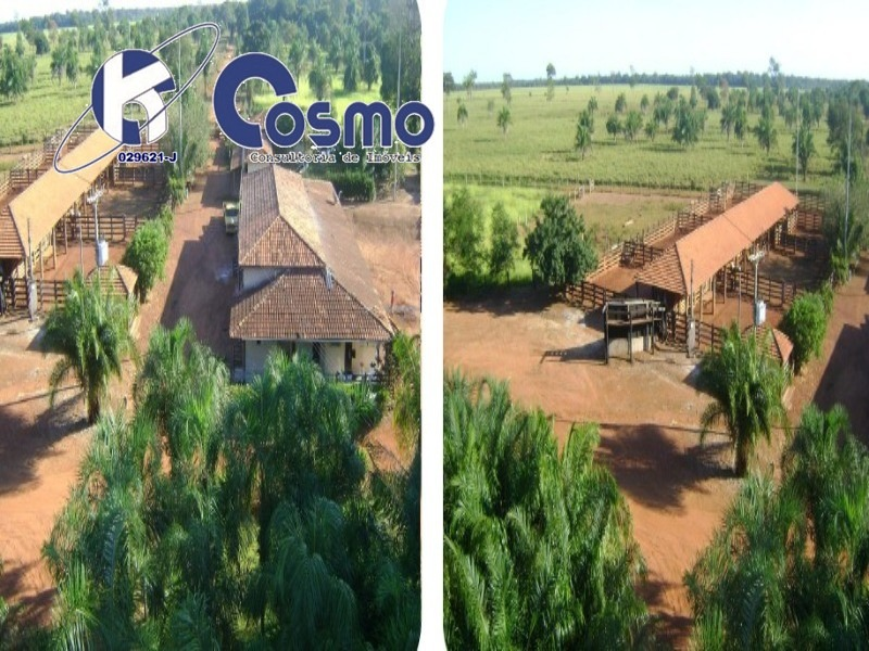 fazenda, a venda, vale do araguaia - mt. - fa00043 - 32942079