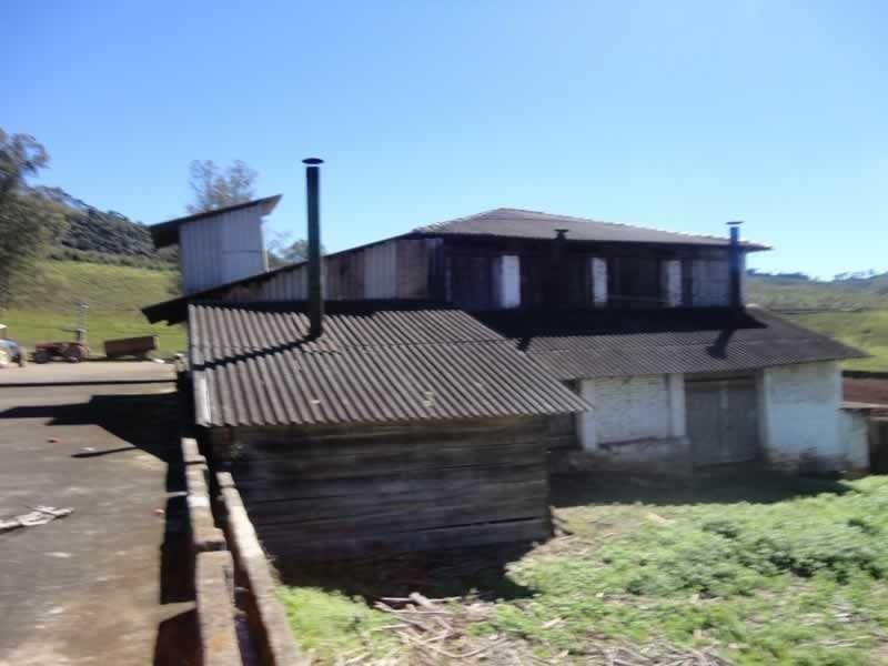 fazenda com 110 alqueires em poços de caldas/mg - 7707