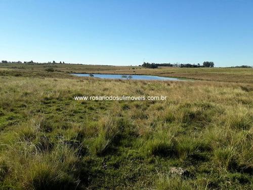 fazenda com 1.127 hectares para lavoura em alegrete - rs