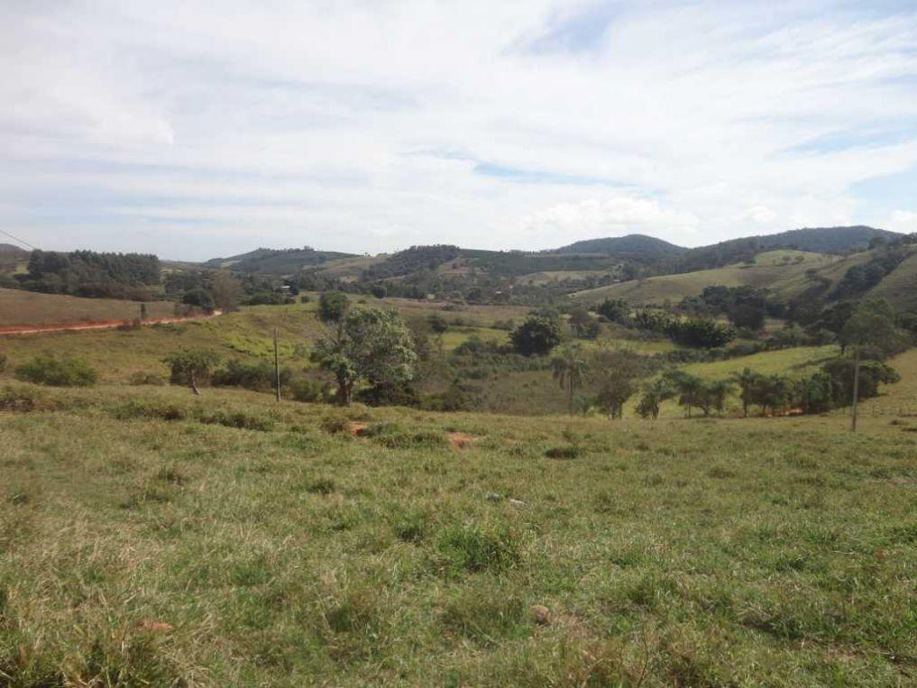 fazenda com 121,18 hectares em são gonçalo de sapucaí/mg - 1033