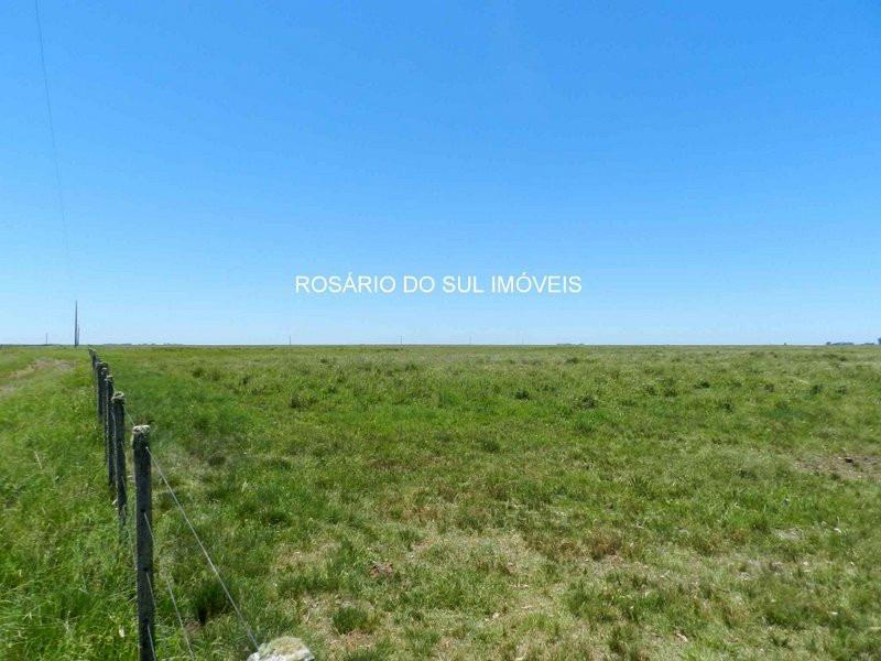 fazenda com 2138 hectares em santana do livramento
