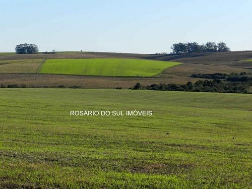 fazenda com 298 hectares em são francisco de assis - rs