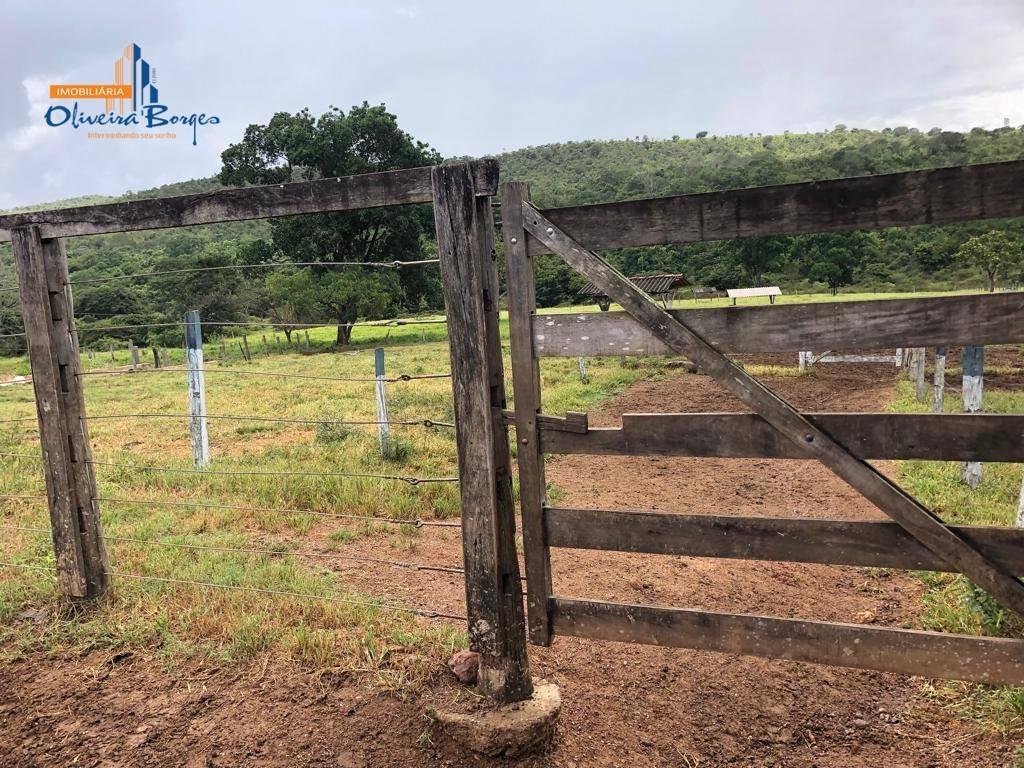 fazenda com 3 dormitórios à venda, 1548800 m² por r$ 3.200.000 - zona rural - alexânia/go - fa0042