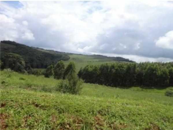 fazenda com 300 hectares em aiuruoca/mg - 1042