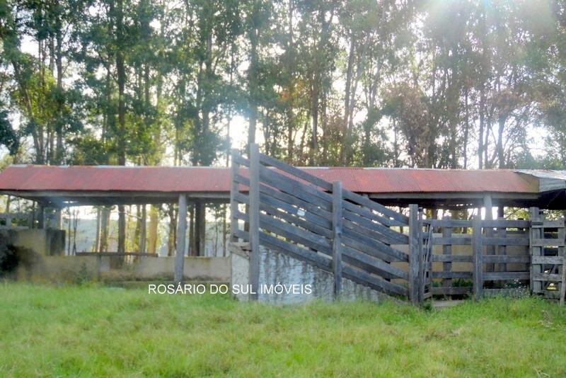 fazenda com 3000 hectares  entre rosário sul e alegrete - rs