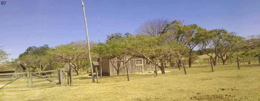 fazenda com 310 alqueires em vila rica - 1065
