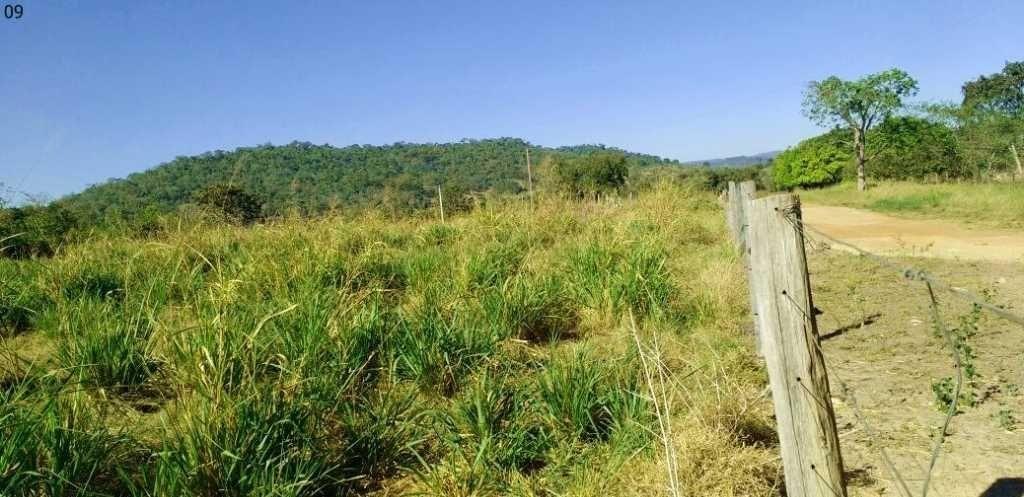 fazenda com 310 alqueires em vila rica - 7430