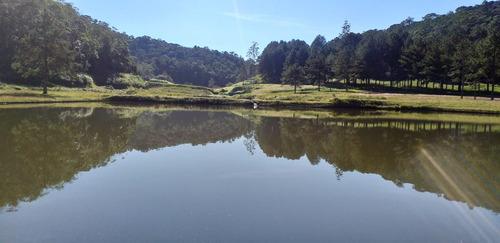 fazenda com 320 alqueires 3 grandes lagos cachoeira