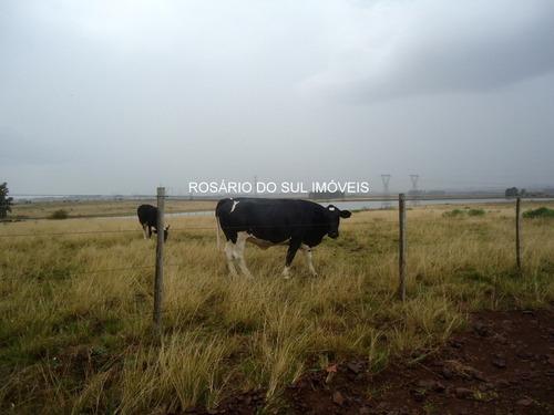 fazenda com 330 ha em alegrete