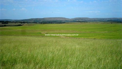 fazenda com 341,5 hectares em alegrete, rs