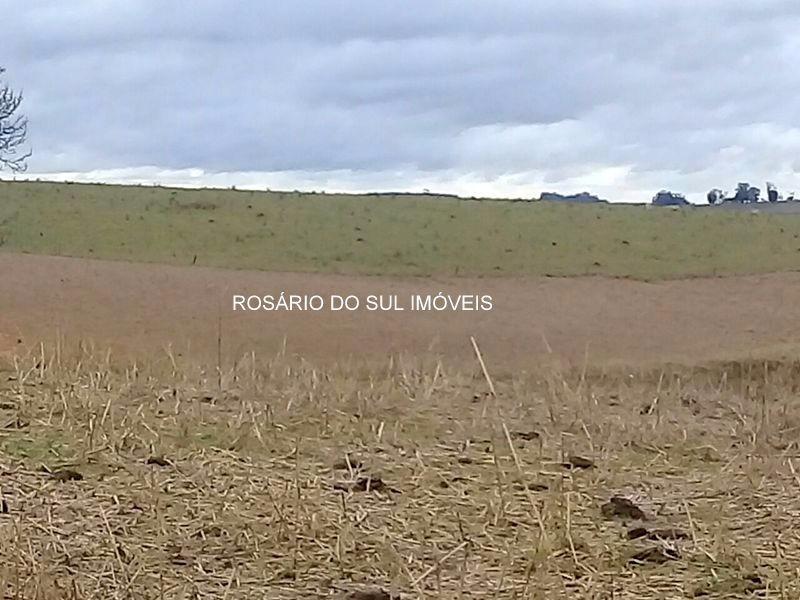 fazenda com 368 hectares em alegrete - rs