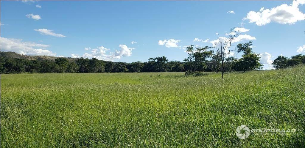 fazenda com 4 dormitórios à venda, 726000 m² por r$ 1.500.000,00 - zona rural - brazlândia/df - fa0001