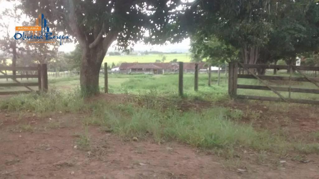 fazenda com 4 dormitórios à venda, 9680000 m² por r$ 10.000.000,00 - zona rural - alexânia/go - fa0041