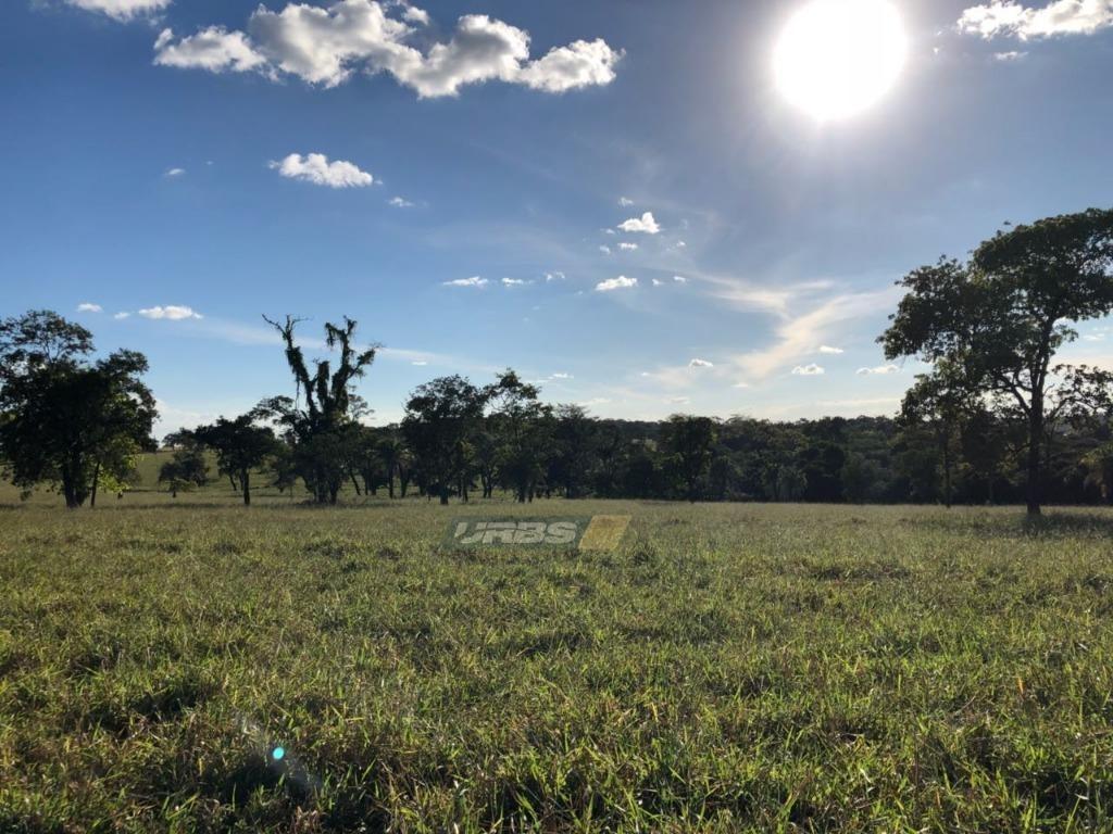 fazenda com 4 quartos à venda, 2537612 m² por r$ 34.000.000 - sítio de recreio paraíso tropical - goiânia/go - fa0059