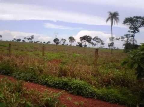 fazenda com 411 alqueirões entre goiás e tocantis - 1083