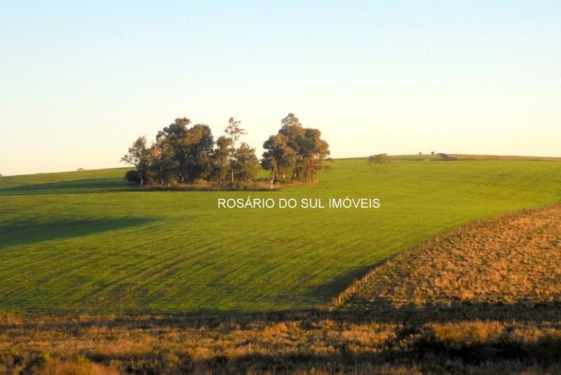 fazenda com 474 hectares em rosário do sul - rs