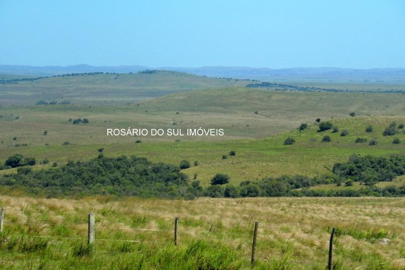 fazenda com 605 hectares em rosário do sul - rs