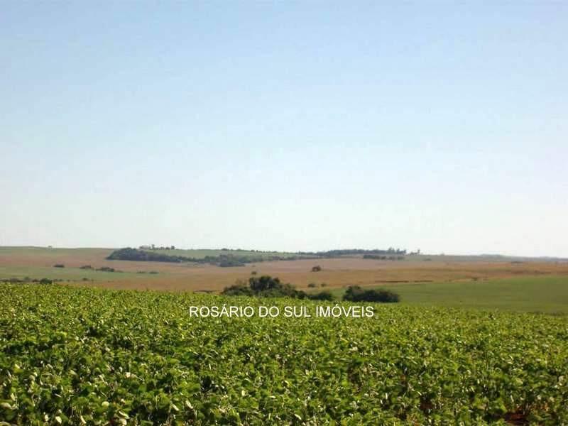 fazenda com 711 hectares em são luiz gonzaga - rs