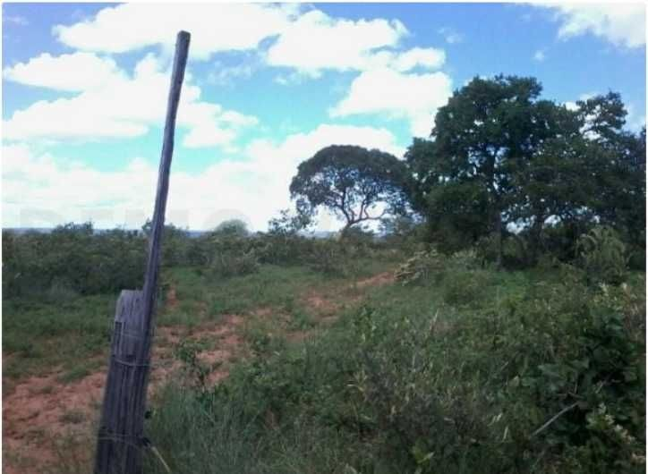fazenda com 727 hectares em brasília de minas/mg - 7702