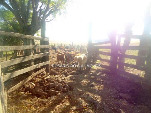 fazenda com 741 ha em rosário do sul