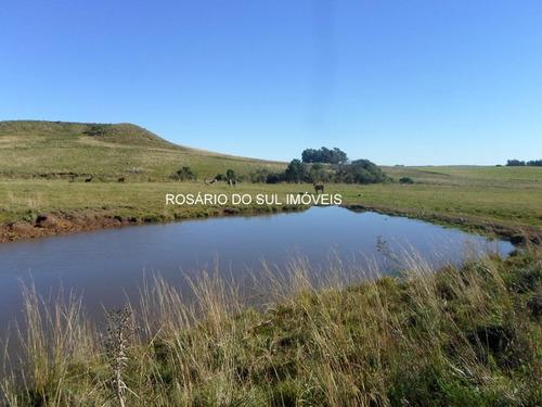 fazenda com 780 hectares entre rosário do sul/alegrete -rs