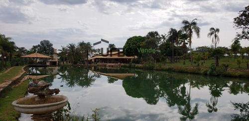 fazenda com 8 dormitórios à venda, 3000800 m² por r$ 12.000.000 - centro - abadiânia/go - fa0091
