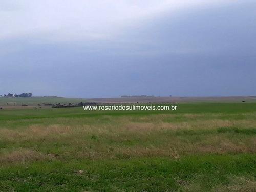 fazenda com 890 hectares para lavoura em santa maria - rs