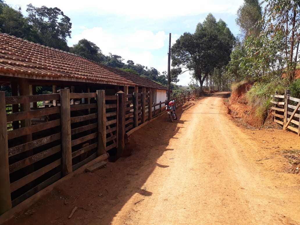 fazenda com plantio de oliveira visando azeite  , pasto , com 80 hectares, casa sede , casa caseiro , curral. - 792