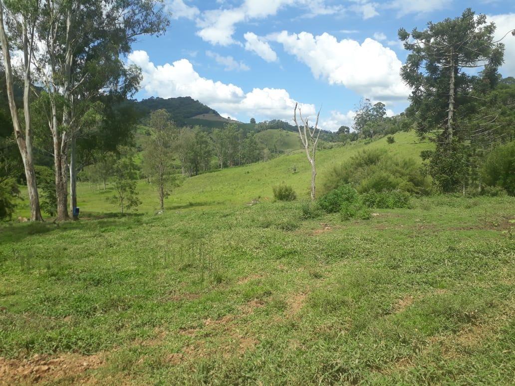 fazenda com sede histórica em carmo de minas , com 115 hectares , toda formada, galpão, curral , 03 casa de colono. - 408