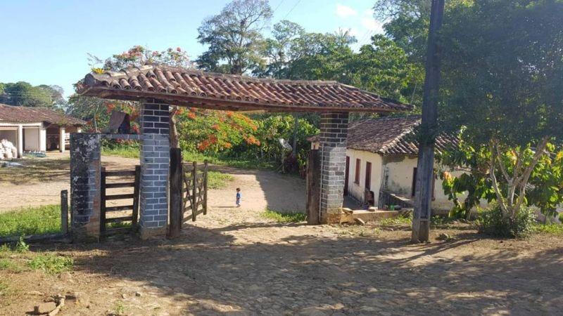 fazenda de 304 hectares, produtora de cacau - 319