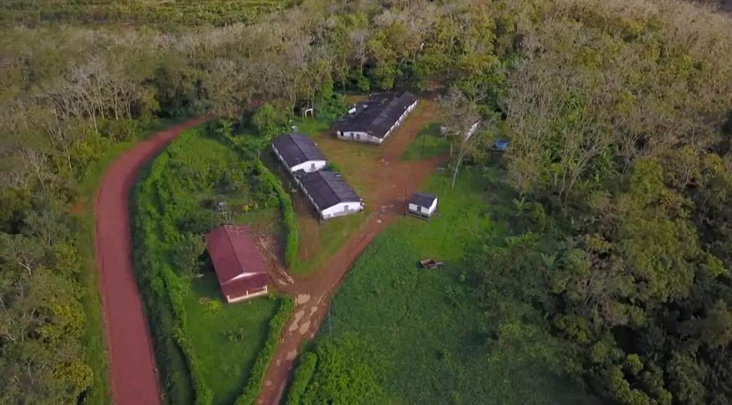 fazenda de cacau, látex e mogno no brasil - cidade ituberá-ba - 1275