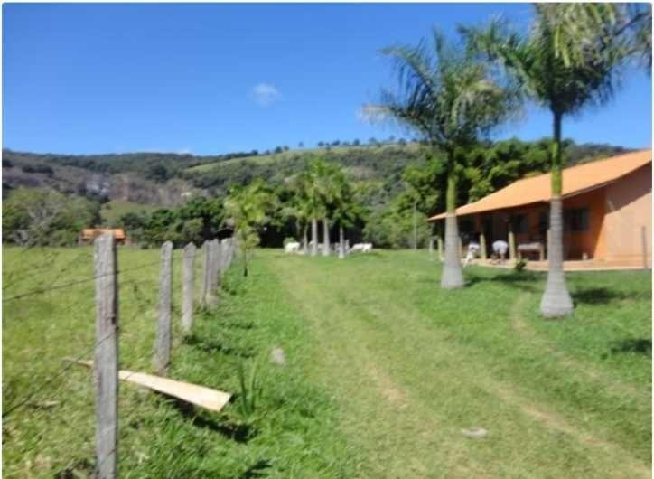 fazenda de café com 36 hectares em são gonçalo do sapucaí - 1027