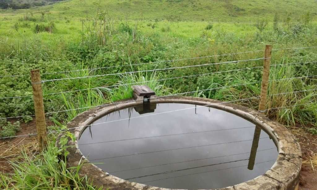 fazenda de gado no norte de minas gerais - 1269
