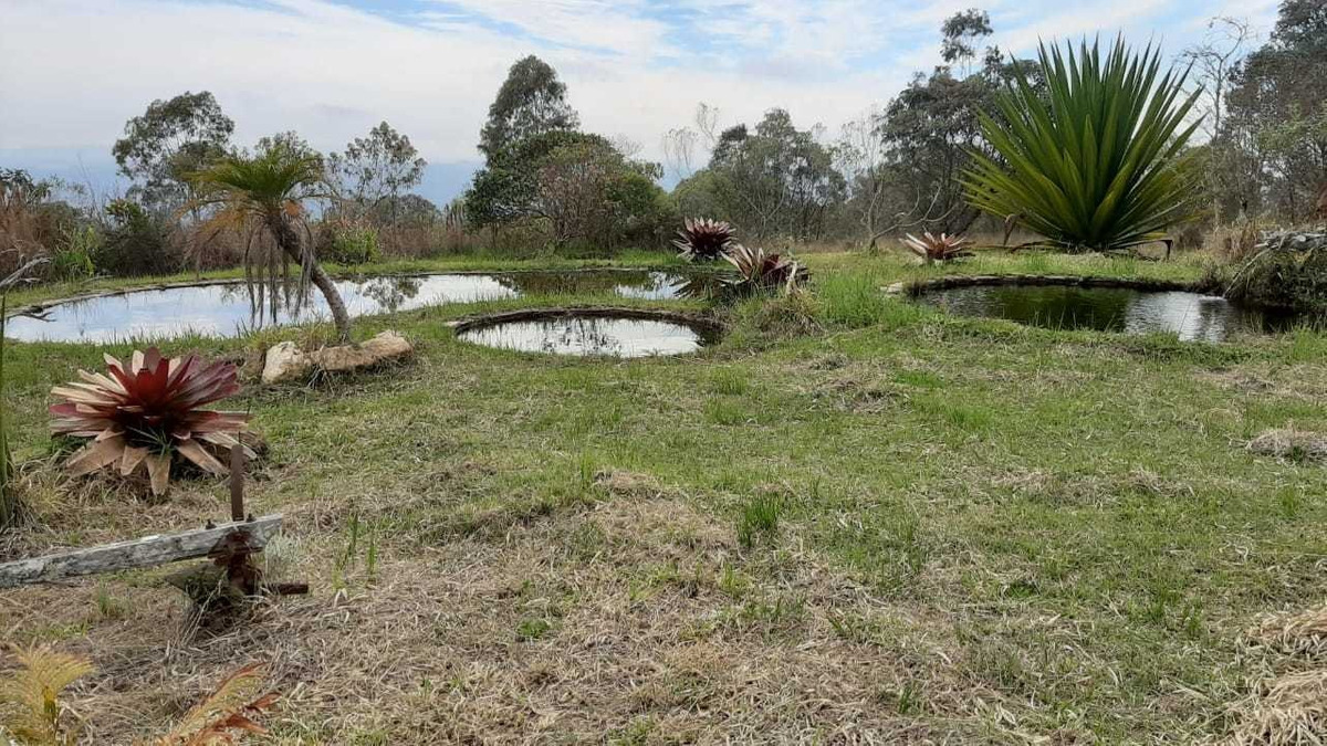 fazenda e pousada , com cachoeira particular , 100 ha ,aiuruoca mg - 465