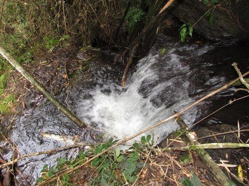 fazenda em aiuruoca , sul de minas , com 64 ha , 90 % tratorável e com muita água. - 200