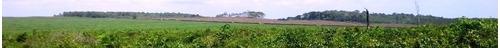 fazenda em araguaína - to, p/ pecuária  - 197