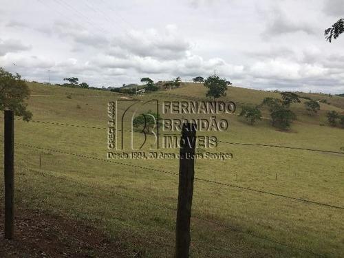 fazenda em areal