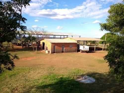 fazenda em campo grande - ms (pecuária) - 996